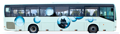 logo cars bleus